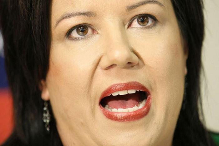Social Development Minister Paula Bennett (file)