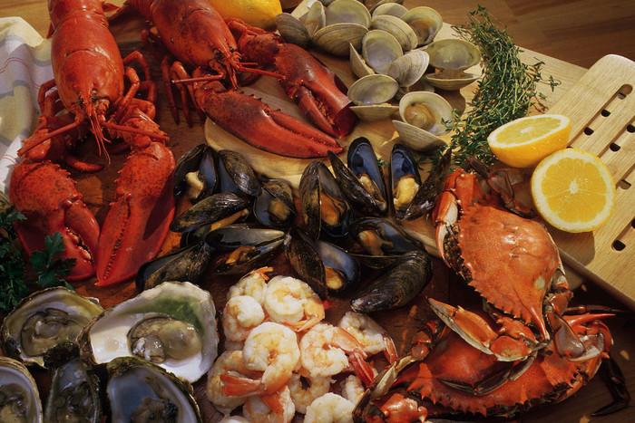 Shellfish caught between Mohakatino in Taranaki and Maunganui Bluff in Northland, including Manukau and Kaipara harbours, shouldn't be eaten (file pic)