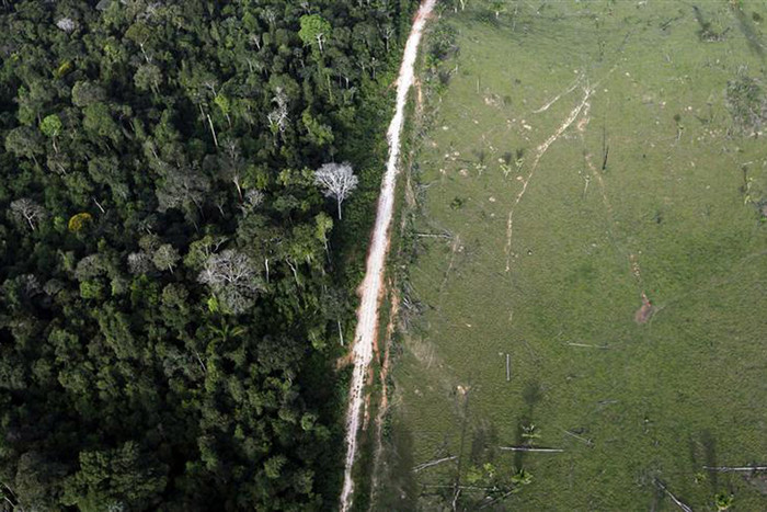 An aerial view shows illegal deforestation close to the Amazonia National Park in Itaituba, Brazil (Reuters/Nacho Doce)