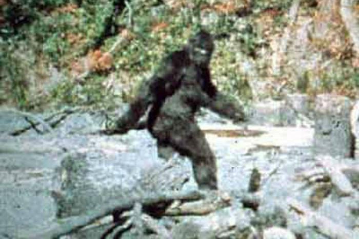 'Bigfoot' as seen in a 1967 film shot in California