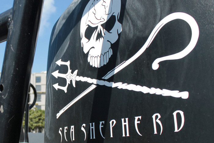 Sea Shepherd logo on the Bob Barker (Photo: Frank Solomona)