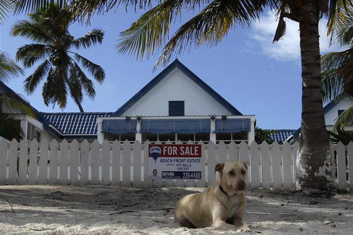 A dog sits outside of the home of anti-virus software pioneer John McAfee in San Pedro (Reuters)