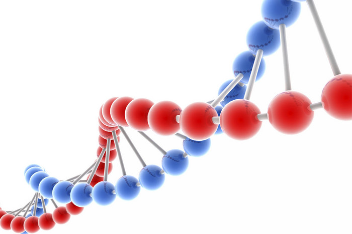 The entire internet would fit ona thumb drive encoded with DNA