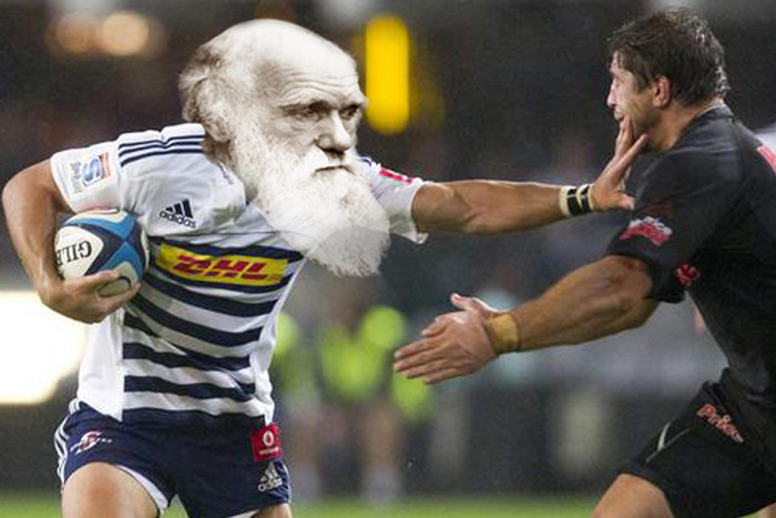 'Charles Darwin' has made his picks for Round 3 of Super Rugby 2013