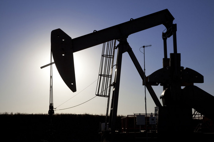 The Government has considered setting up a company to allocate exploration rights for oil and gas (file)