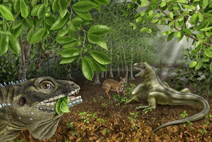 Artist's impression of the lizard (Nebraska State Museum of Natural History)