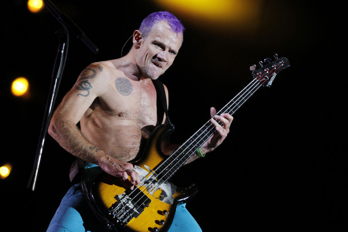 Red Hot Chili Peppers rocker Flea (Reuters)