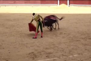 A bullfight (file)