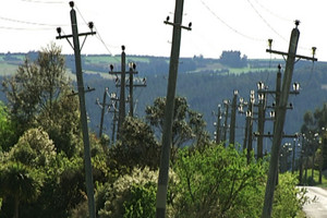 Whistle blower ex-manager of electricity network inundated with support