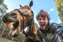 Allan Dixon travels around the world taking photos with animals (daxon /Instagram)