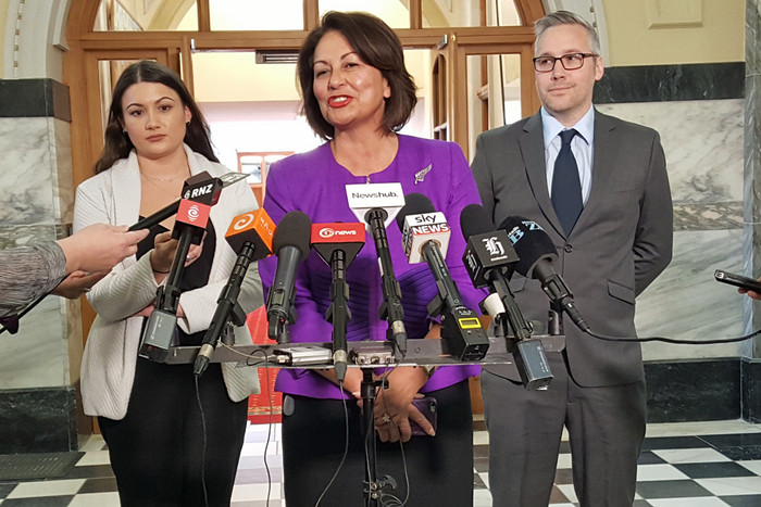 Hekia Parata announced on Wednesday she would not stand in the next election (Newshub.)