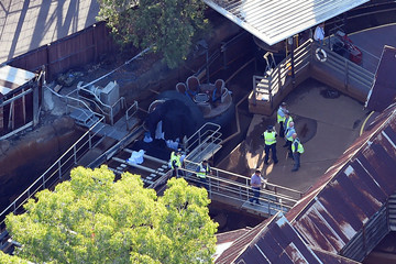 Police inspect Thunder River Rapids ride at Dreamworld (AAP)