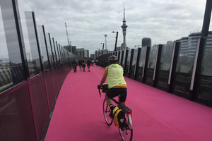 A cyclist on the LightPath bridge (Daniel Jones)