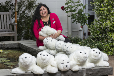 The Selwyn Foundation's Diversional Therapist, Orquidea Mortera, with the expanded 'colony' of PARO therapeutic seal robots (Supplied / The Selwyn Foundation)