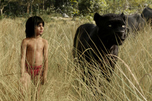 The Jungle Book is in cinemas now