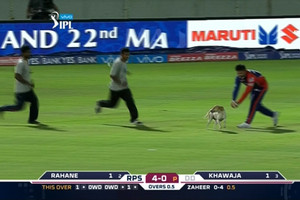 Video: Dog runs onto field during IPL cricket game