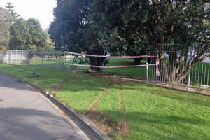 The scene where the vehicle fleeing police crashed through a fence in Porirua (Newshub.)
