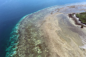 Aerial view of bleached coral reef located between Cairns and Papua New Guinea (AAP)