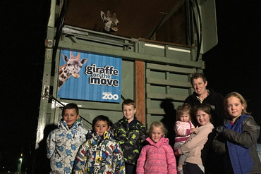 A handful of locals braved the dark and cold on Monday night to meet Zuri the giraffe (Supplied)