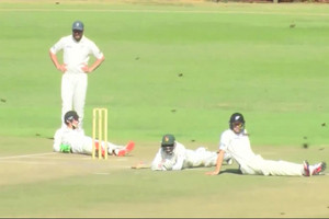 Video: Black Caps game invaded by bees