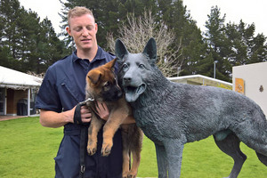 Police pup follows in dad Gazza's paw prints