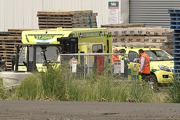 A police spokeswoman said a man had become trapped under pallets and died at the scene (Newshub.)